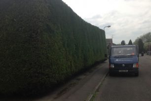 Hedge Trimming In Aylesbury