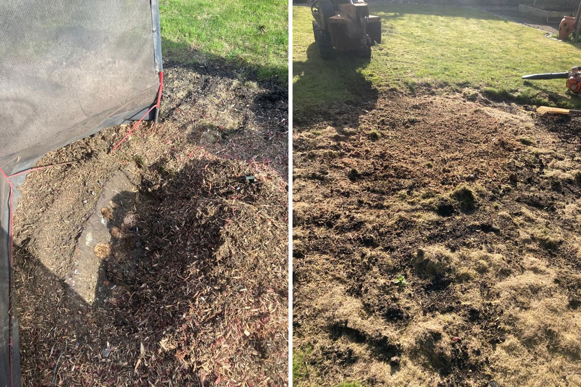 Stump grinding service in Oxfordshire