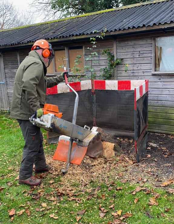 Stump grinding in Oxford